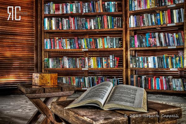 © 2013 Roberta Cappelli Digghiri Resort, Maldive. Ho passato la vita a leggere i libri degli altri, a fare i sogni degli altri, a vivere la vita degli altri. Ora tocca a me.