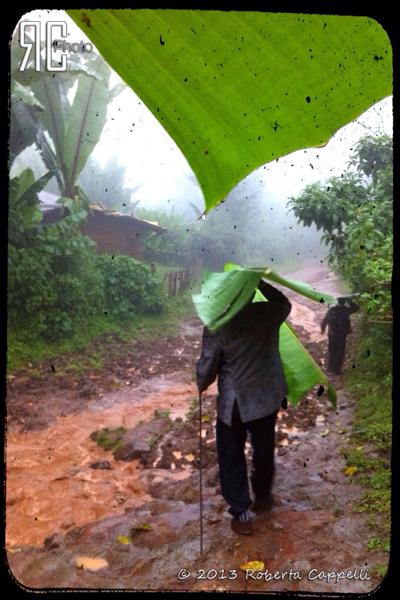 © 2013 Roberta Cappelli Arramo, Ethiopia. Green umbrellas!